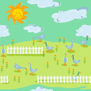 duck farm_scenery