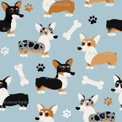 Corgi Dogs Blue