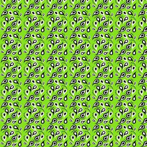 Key Lime Sorbet Paisley