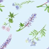 Blue Flowers watercolor mist blue