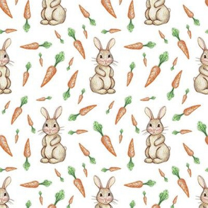 Bunny and Carrot Love on White