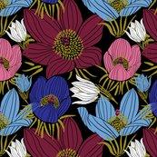 Rarctic-pasque-flowers-mix-black_shop_thumb