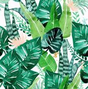 jungle-tropical//white