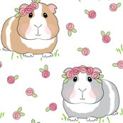 Rguinea-pigs-with-roses-larger-on-white_shop_thumb