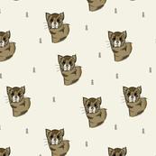Funky Ferret-Marshmellow