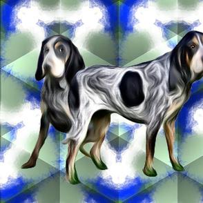 Bluetick  Coonhounds2