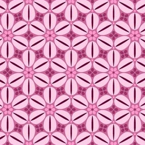 07094018 : R6 cowrie : blackcurrant pink