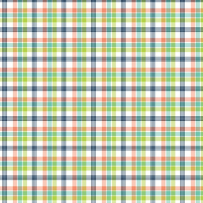 Coral, Navy, Aqua, and Lime Plaid