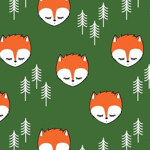 sleepy fox -  pine