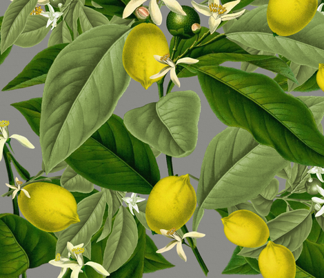 Lemon Botanical ~ Earl Grey ~ Faux Canvas  fabric by peacoquettedesigns on Spoonflower - custom fabric