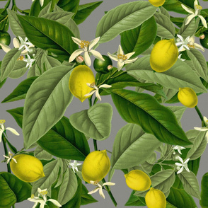 Lemon Botanical ~ Earl Grey ~ Faux Canvas