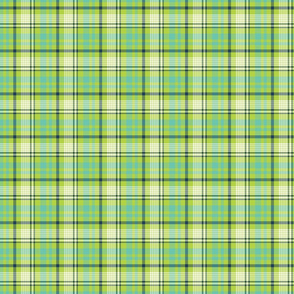 Navy, Aqua, and Lime Plaid