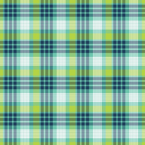 Aqua, Navy, and Lime Plaid