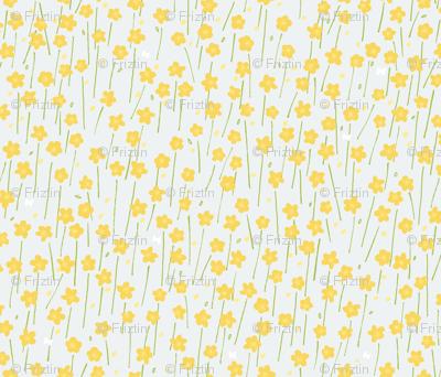 Buttercup Field M+M Slate by Friztin
