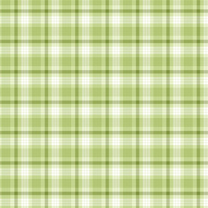 Green Spring Plaid