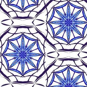 Blue Star Webs on White