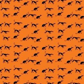 Sociable_Hound_Pack-Black_On_Orange-