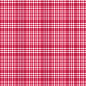 Pink and Red Plaid