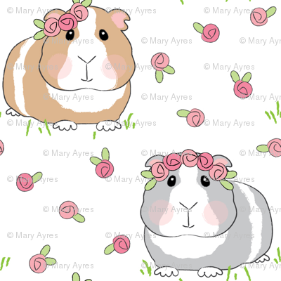 tiny guinea-pigs-with-roses-on-white