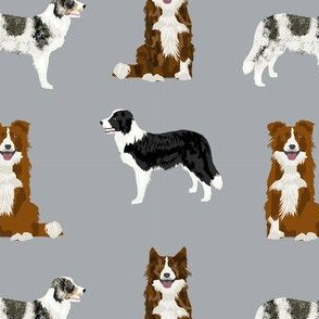 border collie mixed basic dog breed pattern border collies fabric grey