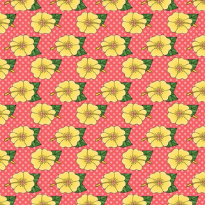 Yellow Hibiscus Flowers on Pink