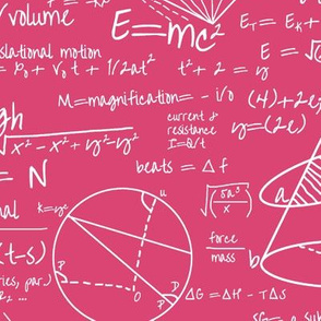 Common Equations - Hot Pink // Large