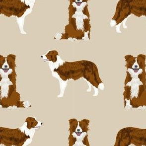 border collie simple dog breed fabric for pet lovers tan