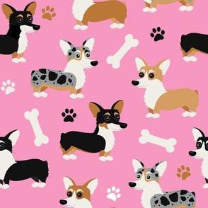 Corgi Dogs Pink