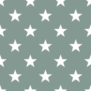 Sage & Coral Star Small