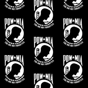 POW / MIA Emblem // Medium