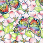 Apple Blossoms Rainbow Butterflies