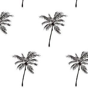 Take Me to the Tropics / palm trees / sketch illustration tropical