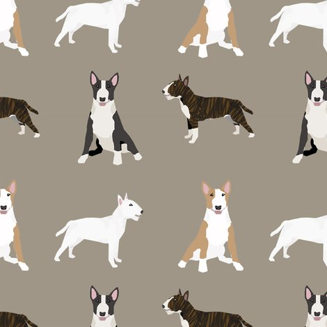 Rbull-terrier-mixed-simple-3_shop_preview