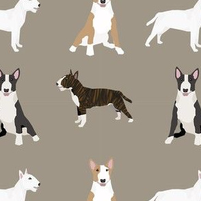 bull terrier mixed coat colors simple terriers dog breed fabric medium