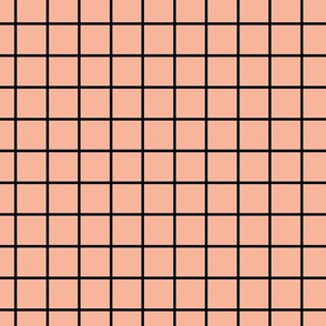 Square Grid - Coral Black