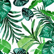 tropical-greens//white