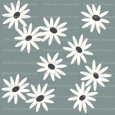 daisies - dusty blue flowers spring baby girls