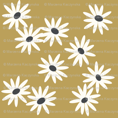 daisies - mustard daisies, baby girl floral