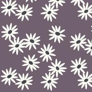 Daisies - purple violet