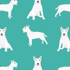 bull terrier white coat simple dog breed fabric turquoise