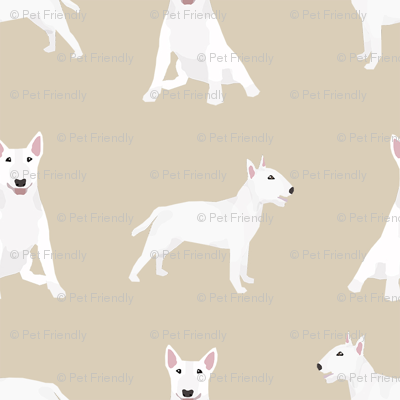 bull terrier white coat simple dog breed fabric tan