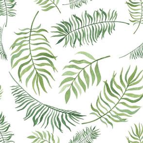 Leaves watercolor