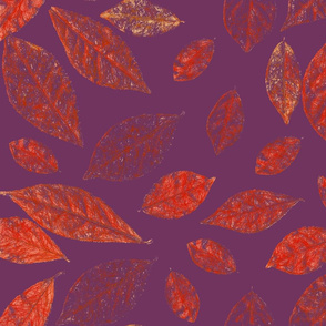 leaves on purple