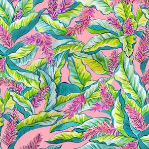 pink ginger blossoms-pink bkg.