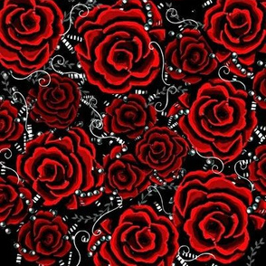red roses 002