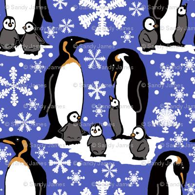 Emperor penguins 6x6