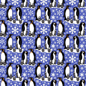 Emperor penguins 6x6