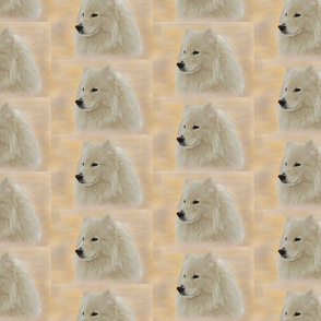 SamoyedPortrait; Gold & Peach
