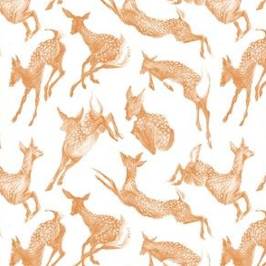 Pretty Little Fawns