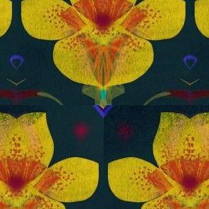 Cupflower Rhythms Blue